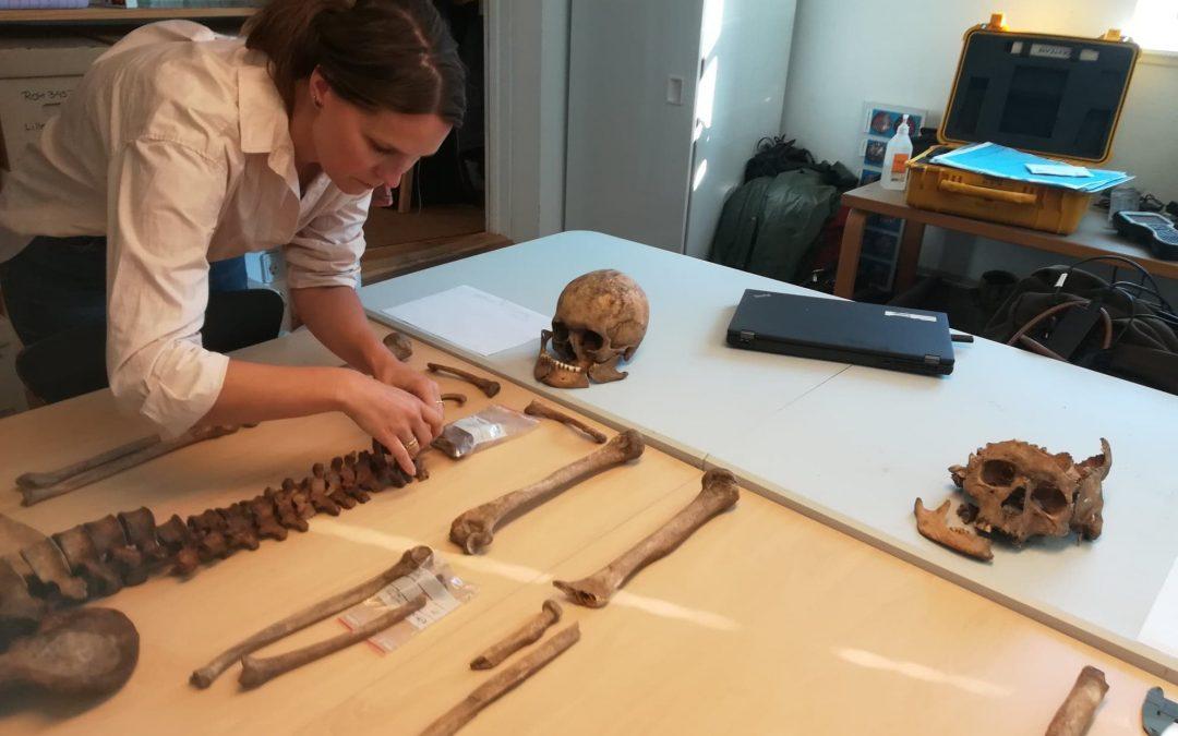 Husker du skeletterne på Tørslev Hage? Mød de to stenaldermænd, som knoglerne tilhørte